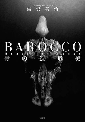 BAROCCO Beauty of Bones 骨の造形美